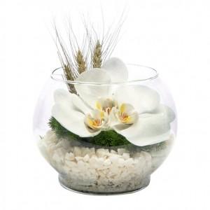 Orchids in Aquarium Vase-1