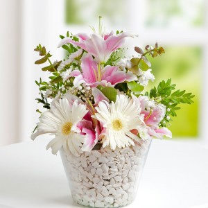Pink White Dream Gerberas and Lilies