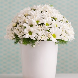 White Daisy Arrangement-1